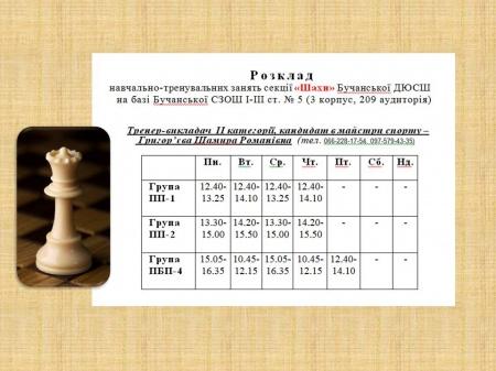 """Розклад роботи секції """"Шахи"""" на 2015-2016 нач.рік"""